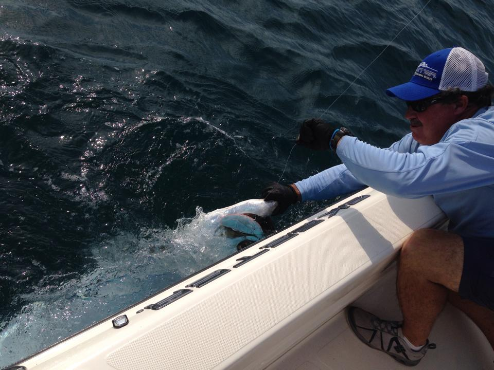 seasonal fishing charters with tarpon